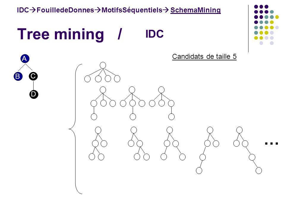 Tree mining / IDC FouilledeDonnes MotifsSéquentiels SchemaMining IDC Candidats de taille 5 A B C D …