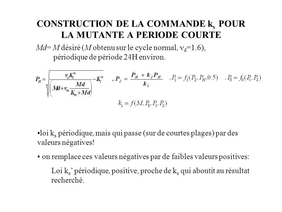 CONSTRUCTION DE LA COMMANDE k s POUR LA MUTANTE A PERIODE COURTE Md= M désiré (M obtenu sur le cycle normal, d =1.6), périodique de période 24H environ.