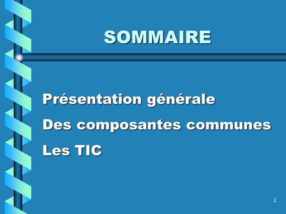 2 Présentation générale Des composantes communes Les TIC SOMMAIRE