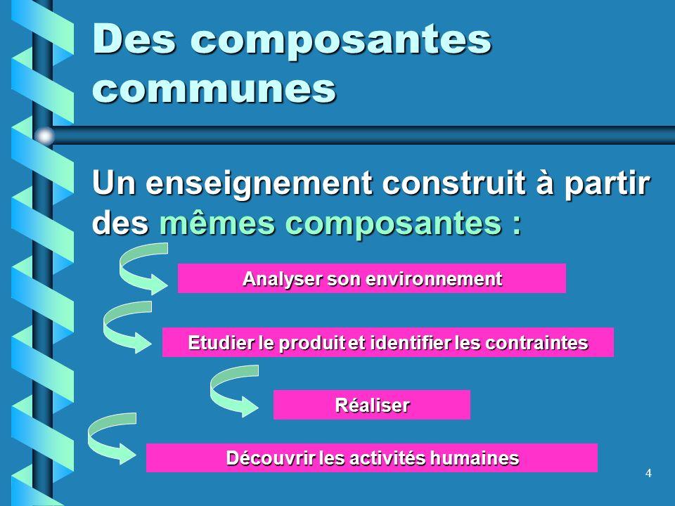 4 Des composantes communes Un enseignement construit à partir des mêmes composantes : Analyser son environnement Découvrir les activités humaines Réal