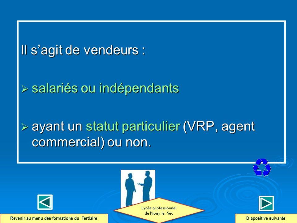 Il sagit de vendeurs : salariés ou indépendants salariés ou indépendants ayant un statut particulier (VRP, agent commercial) ou non. ayant un statut p