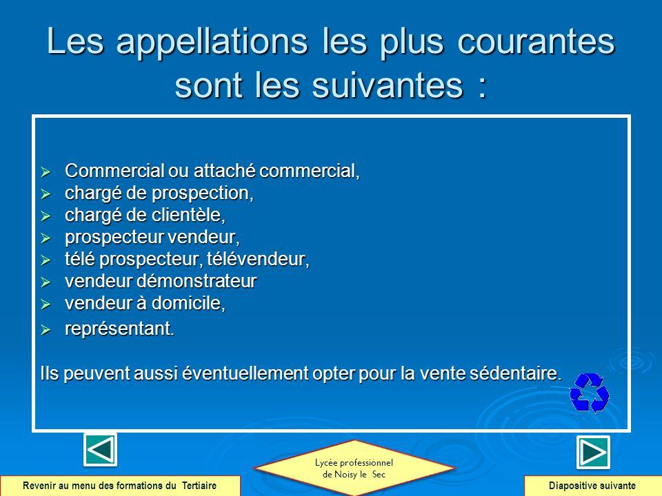 Les appellations les plus courantes sont les suivantes : Commercial ou attaché commercial, Commercial ou attaché commercial, chargé de prospection, ch