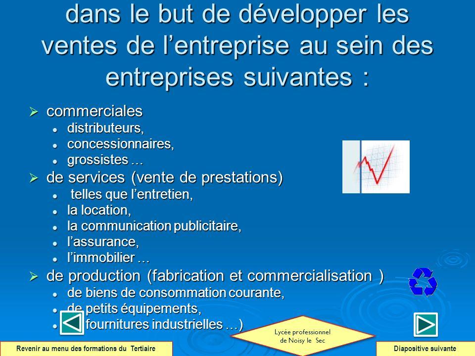 dans le but de développer les ventes de lentreprise au sein des entreprises suivantes : commerciales commerciales distributeurs, distributeurs, conces
