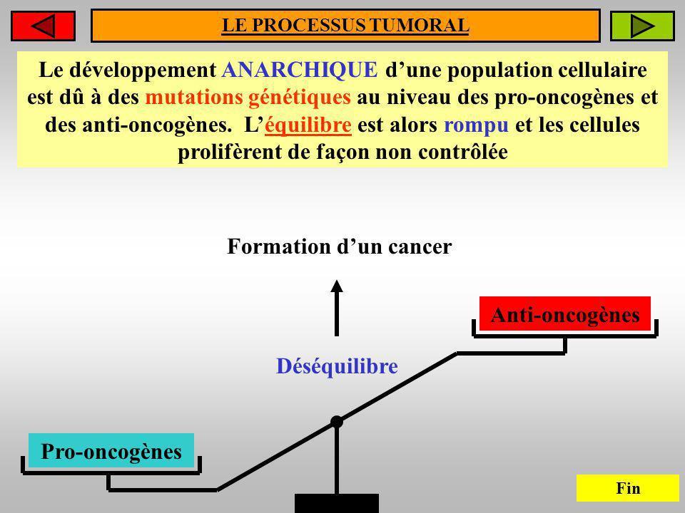 LE PROCESSUS TUMORAL Le développement ANARCHIQUE dune population cellulaire est dû à des mutations génétiques au niveau des pro-oncogènes et des anti-