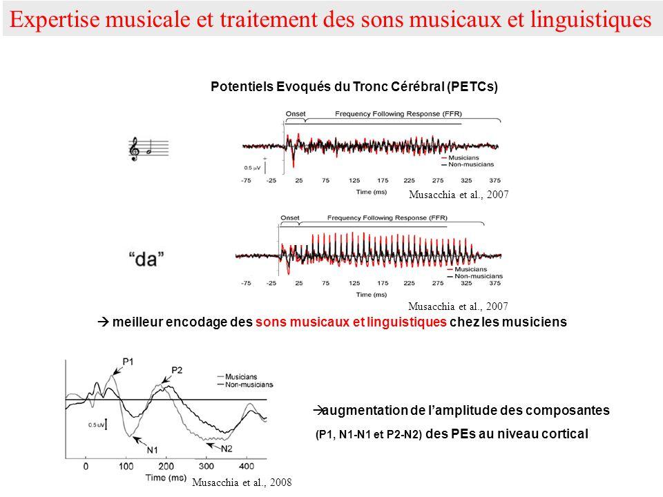 meilleur encodage des sons musicaux et linguistiques chez les musiciens augmentation de lamplitude des composantes (P1, N1-N1 et P2-N2) des PEs au niv