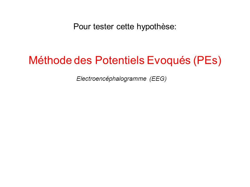 Pour tester cette hypothèse: Méthode des Potentiels Evoqués (PEs) Electroencéphalogramme (EEG)