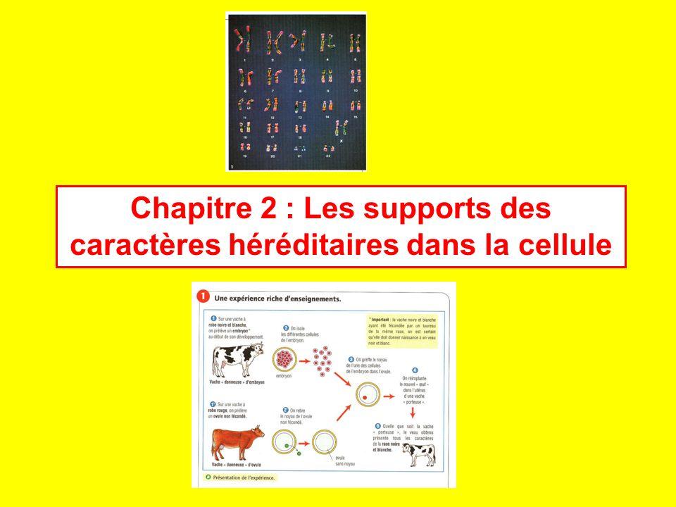 Chr 9 Allèles présents au niveau des 2 chromosomes n°9 allèles A : allèles B : allèles O : Molécules présentes sur la membrane des hématies : Molécules A : Molécules B : Groupe sanguin (=un caractère de lindividu) ABAB O A A A A A A A A B B B B B B AA A A BB B B OO OO