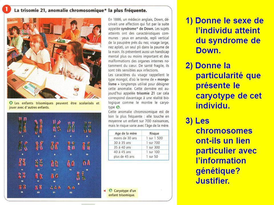 1) Donne le sexe de lindividu atteint du syndrome de Down. 2) Donne la particularité que présente le caryotype de cet individu. 3) Les chromosomes ont