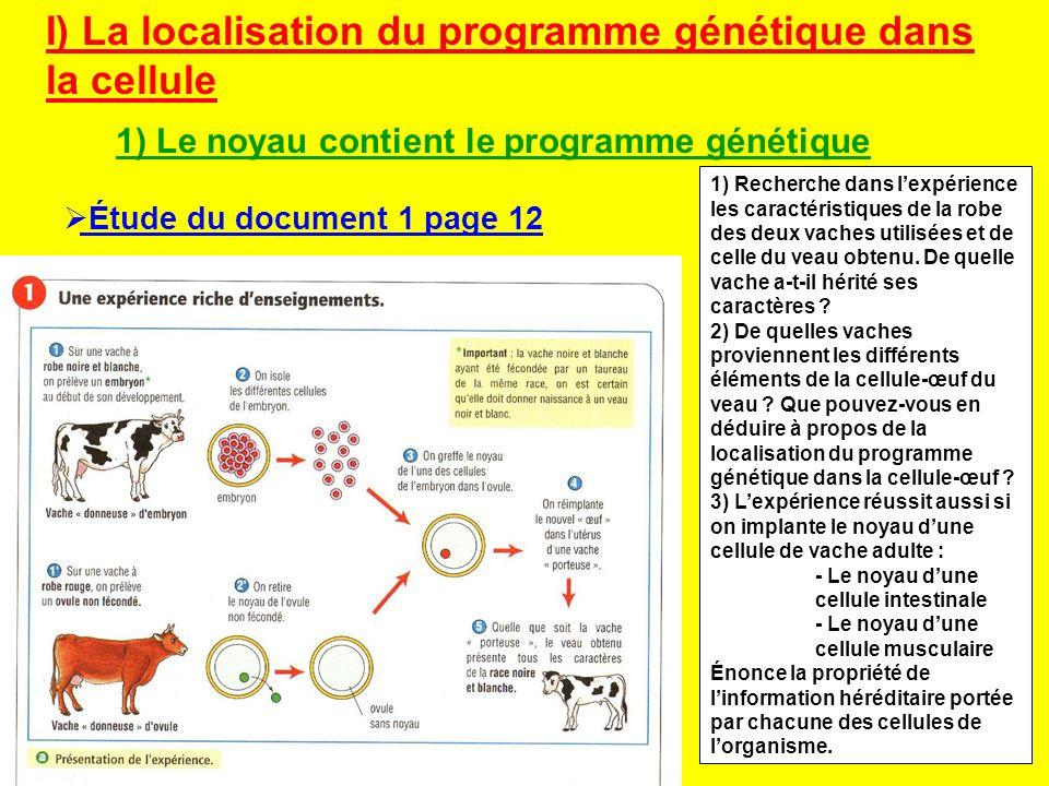 I) La localisation du programme génétique dans la cellule 1) Le noyau contient le programme génétique 1) Recherche dans lexpérience les caractéristiqu