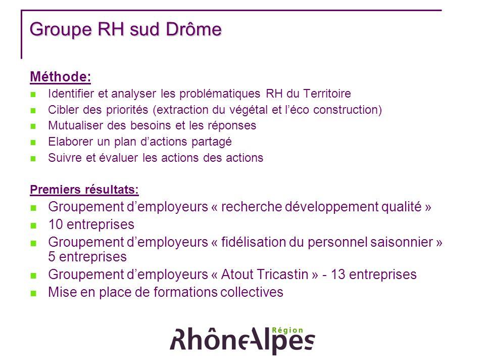 Groupe RH sud Drôme Méthode: Identifier et analyser les problématiques RH du Territoire Cibler des priorités (extraction du végétal et léco constructi