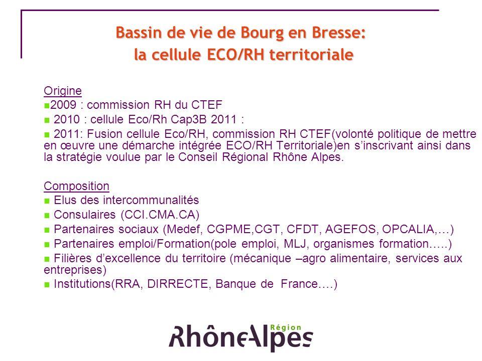 Bassin de vie de Bourg en Bresse: la cellule ECO/RH territoriale Origine 2009 : commission RH du CTEF 2010 : cellule Eco/Rh Cap3B 2011 : 2011: Fusion