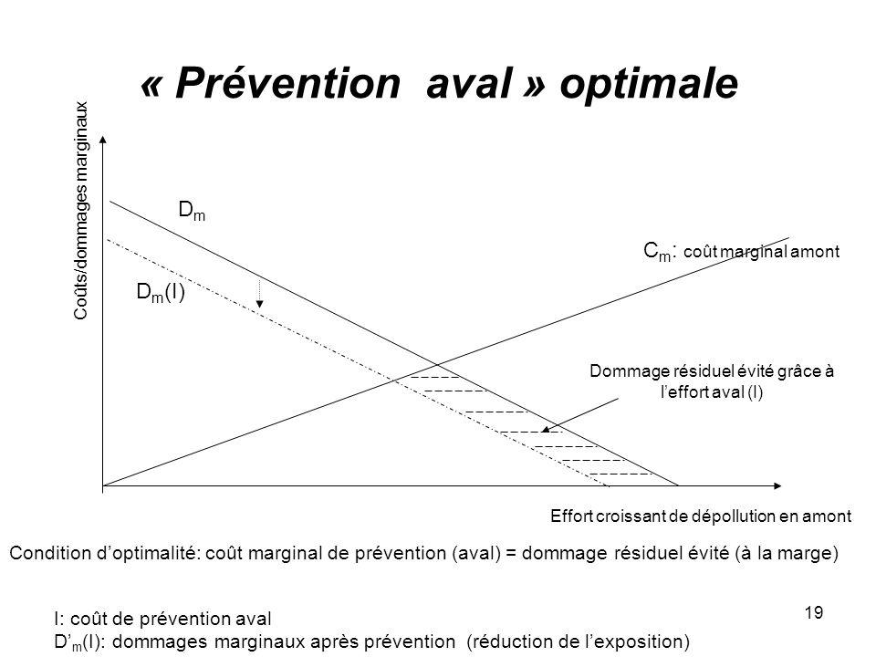 19 « Prévention aval » optimale Effort croissant de dépollution en amont C m : coût marginal amont Coûts/dommages marginaux DmDm D m (I) I: coût de pr