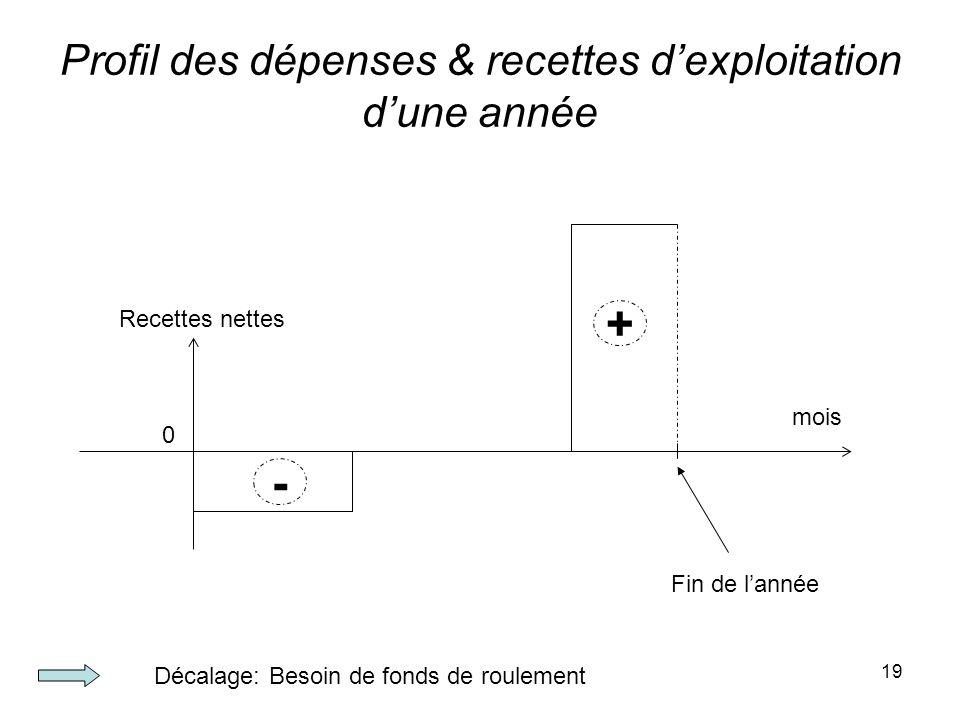19 Profil des dépenses & recettes dexploitation dune année 0 Recettes nettes mois - + Fin de lannée Décalage: Besoin de fonds de roulement