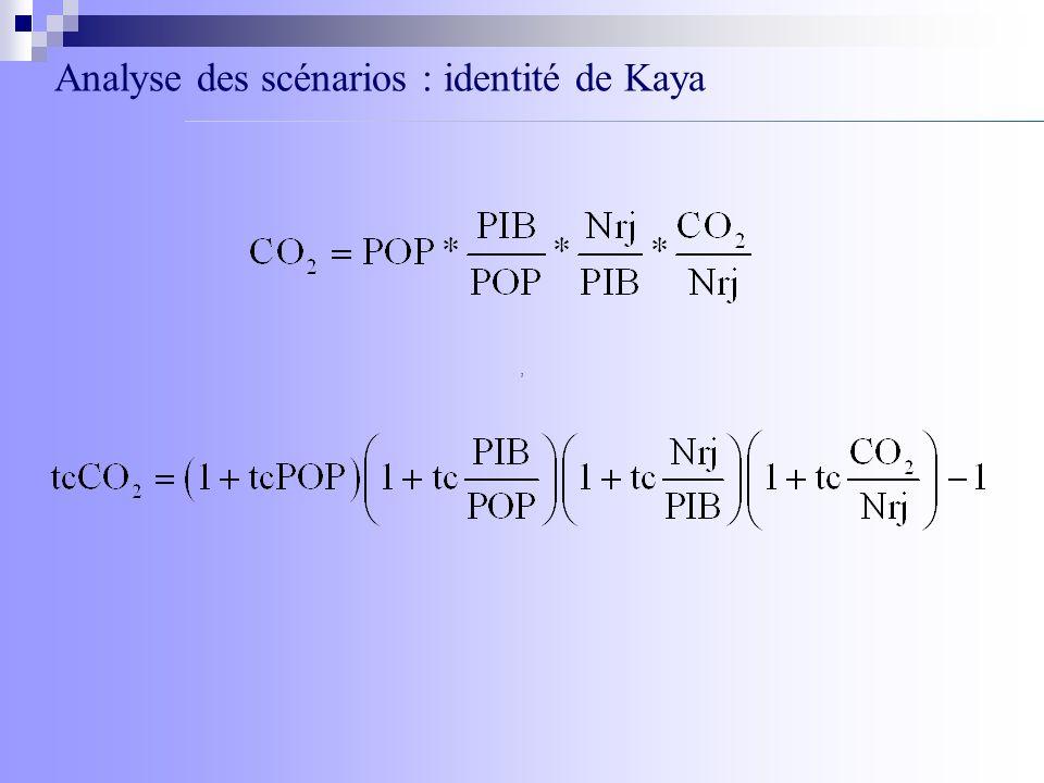 Analyse des scénarios : identité de Kaya,
