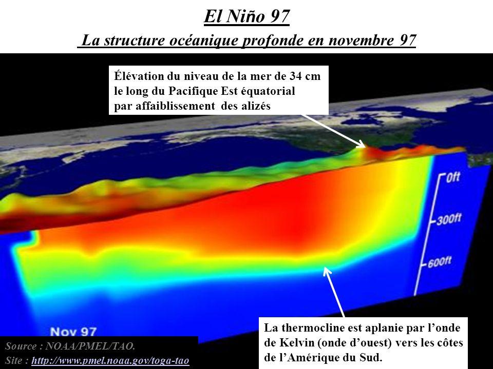 La thermocline est aplanie par londe de Kelvin (onde douest) vers les côtes de lAmérique du Sud. Élévation du niveau de la mer de 34 cm le long du Pac