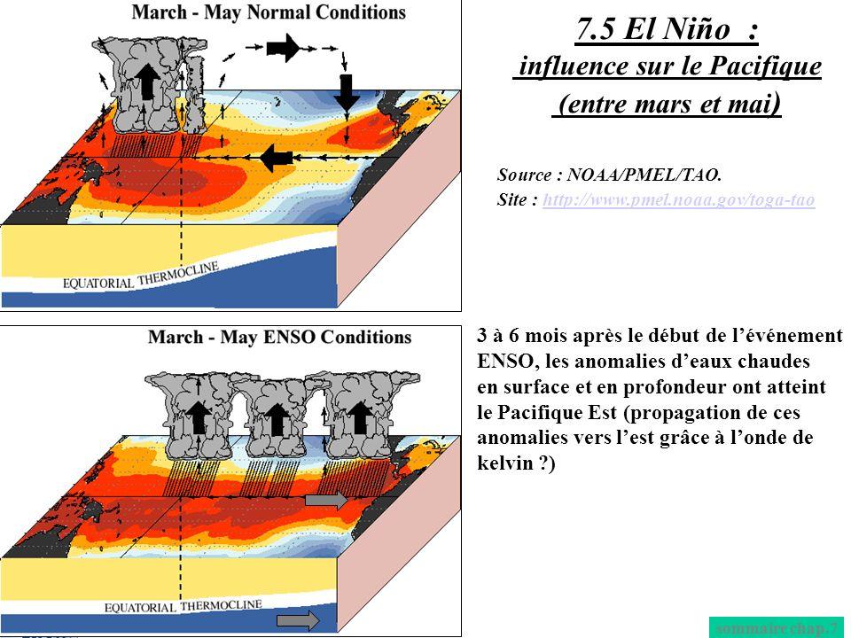 3 à 6 mois après le début de lévénement ENSO, les anomalies deaux chaudes en surface et en profondeur ont atteint le Pacifique Est (propagation de ces