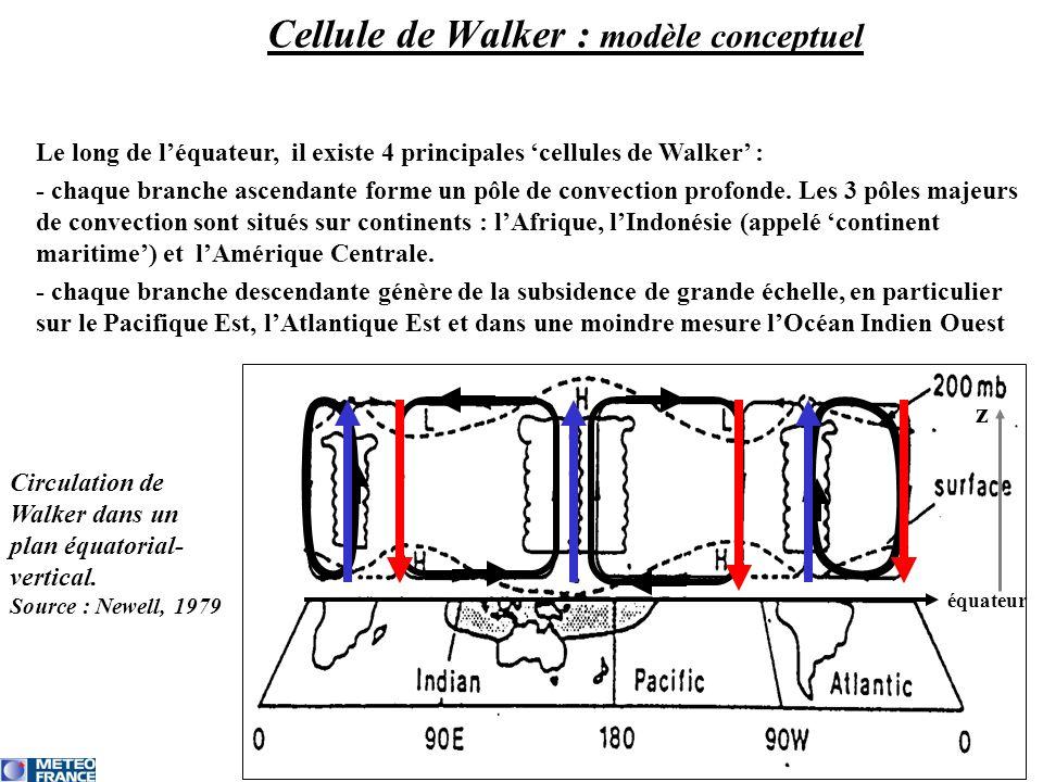 Le long de léquateur, il existe 4 principales cellules de Walker : - chaque branche ascendante forme un pôle de convection profonde.