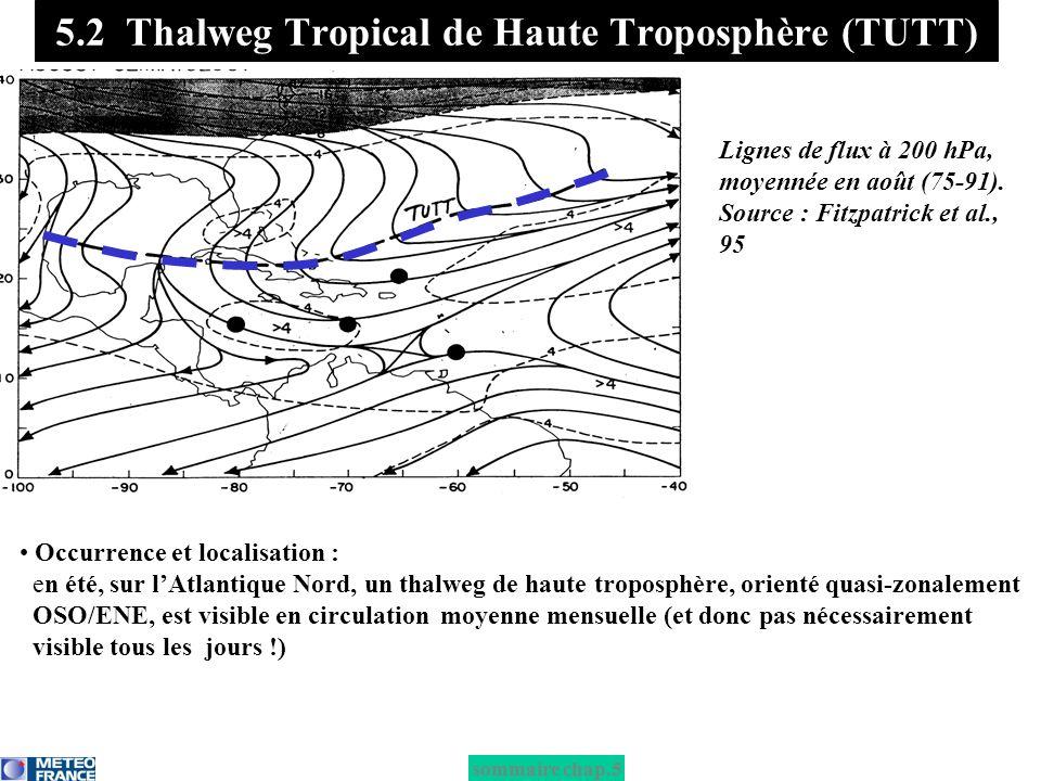 Occurrence et localisation : en été, sur lAtlantique Nord, un thalweg de haute troposphère, orienté quasi-zonalement OSO/ENE, est visible en circulati