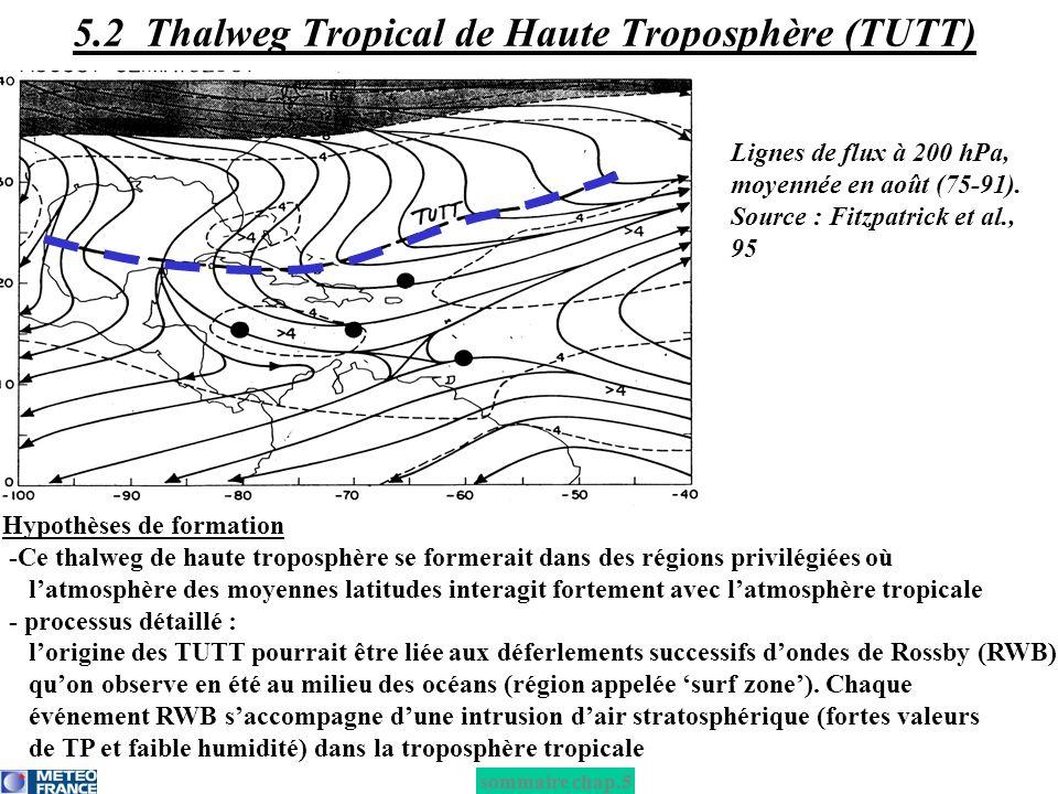 Hypothèses de formation -Ce thalweg de haute troposphère se formerait dans des régions privilégiées où latmosphère des moyennes latitudes interagit fo