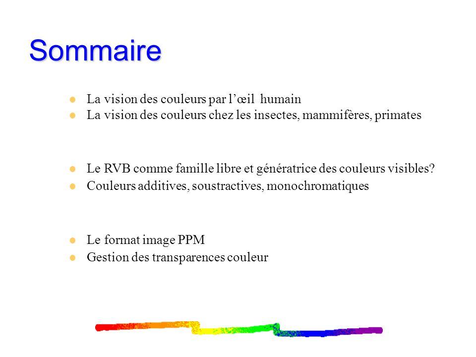 Vision des couleurs par lœil humain: cônes et bâtonnets Bâtonnets (1 type): vision nocturne Cônes (3 types): vision diurne