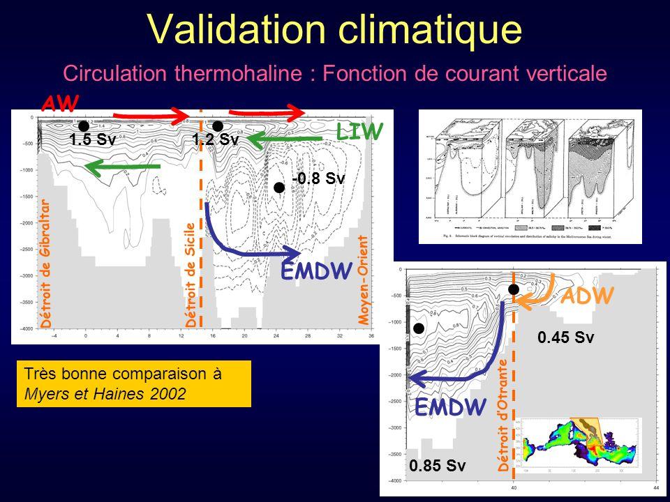 Validation climatique Circulation thermohaline : Fonction de courant verticale Très bonne comparaison à Myers et Haines 2002 Détroit de Gibraltar Détroit de Sicile AW LIW EMDW -0.8 Sv 1.5 Sv1.2 Sv Moyen-Orient Détroit dOtrante 0.45 Sv 0.85 Sv EMDW ADW