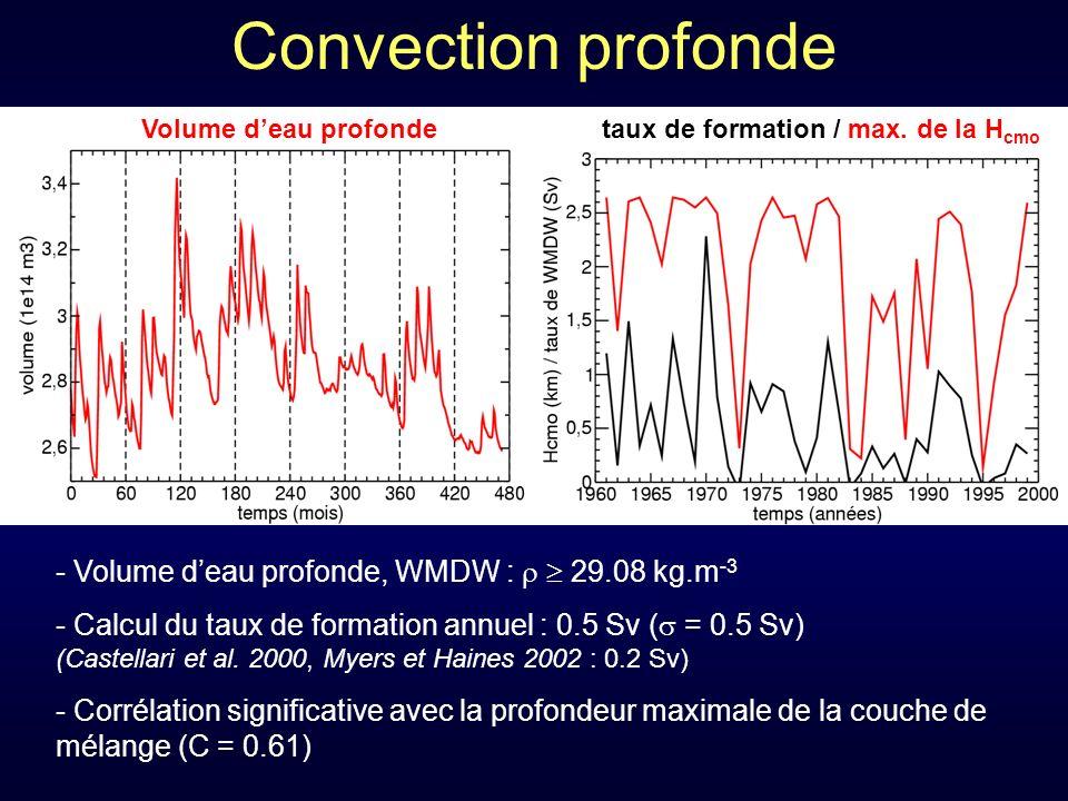 Convection profonde - Volume deau profonde, WMDW : 29.08 kg.m -3 - Calcul du taux de formation annuel : 0.5 Sv ( = 0.5 Sv) (Castellari et al.