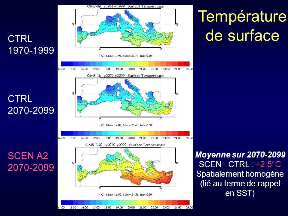 Température de surface Moyenne sur 2070-2099 SCEN - CTRL : +2.5°C Spatialement homogène (lié au terme de rappel en SST) CTRL 1970-1999 CTRL 2070-2099 SCEN A2 2070-2099