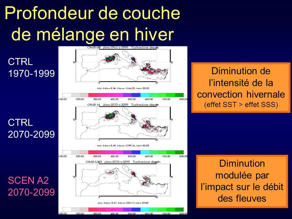 Profondeur de couche de mélange en hiver CTRL 1970-1999 CTRL 2070-2099 SCEN A2 2070-2099 Diminution modulée par limpact sur le débit des fleuves Diminution de lintensité de la convection hivernale (effet SST > effet SSS)