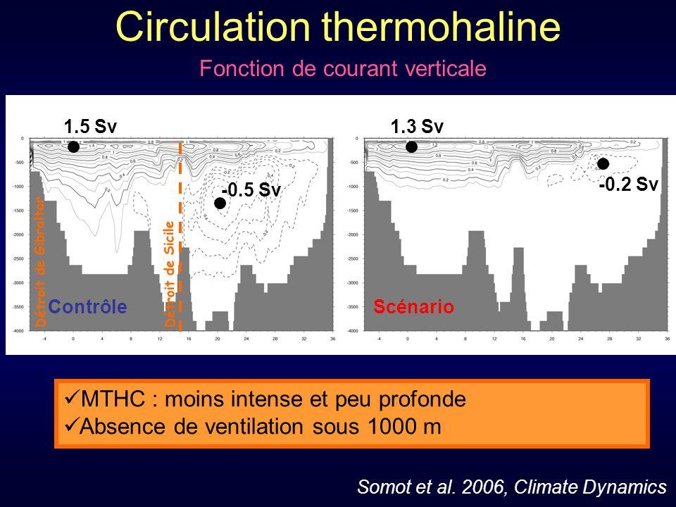 ScénarioContrôle Circulation thermohaline Détroit de Gibraltar Détroit de Sicile MTHC : moins intense et peu profonde Absence de ventilation sous 1000 m 1.5 Sv1.3 Sv -0.5 Sv -0.2 Sv Somot et al.