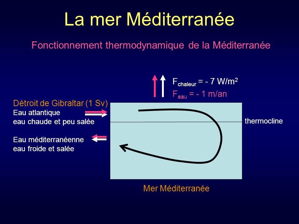 La mer Méditerranée Fonctionnement thermodynamique de la Méditerranée thermocline F chaleur = - 7 W/m 2 Détroit de Gibraltar (1 Sv) Eau atlantique eau chaude et peu salée Eau méditerranéenne eau froide et salée Mer Méditerranée F eau = - 1 m/an
