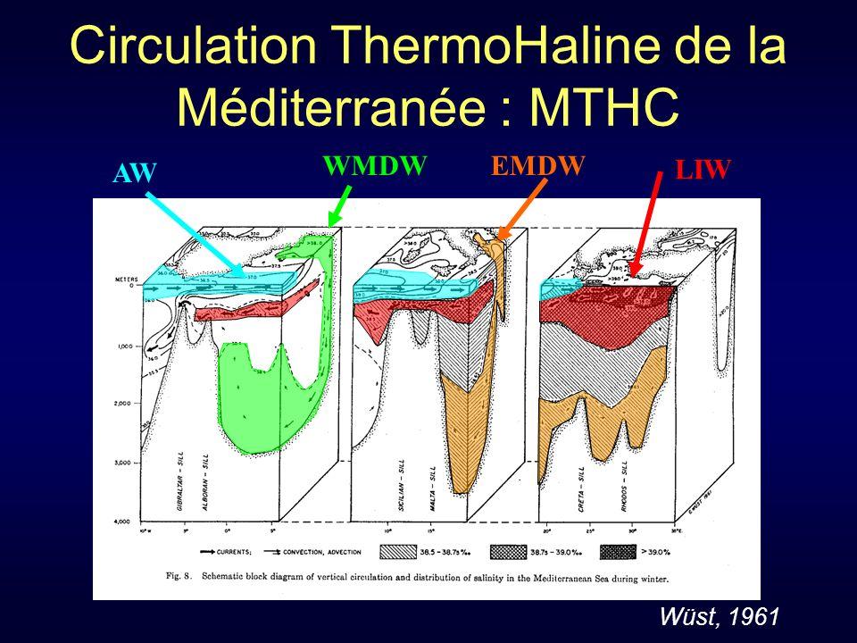 Circulation ThermoHaline de la Méditerranée : MTHC WMDW LIW AW EMDW Wüst, 1961
