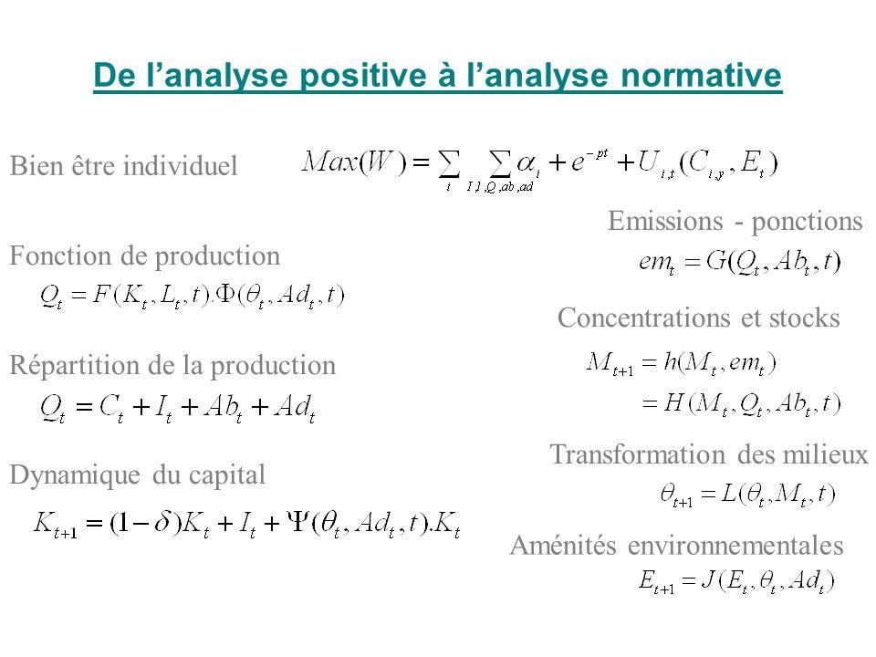 De lanalyse positive à lanalyse normative Bien être individuel Concentrations et stocks Emissions - ponctions Transformation des milieux Aménités envi