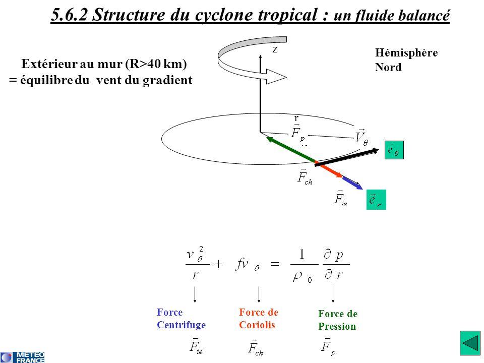 r λ z Extérieur au mur (R>40 km) = équilibre du vent du gradient Force Centrifuge Force de Coriolis Force de Pression Hémisphère Nord 5.6.2 Structure