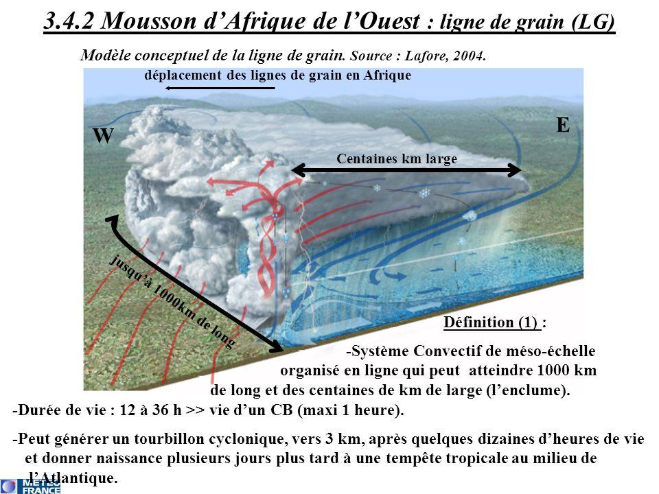 Centaines km large déplacement des lignes de grain en Afrique W E jusquà 1000km de long Définition (1) : -Système Convectif de méso-échelle organisé e
