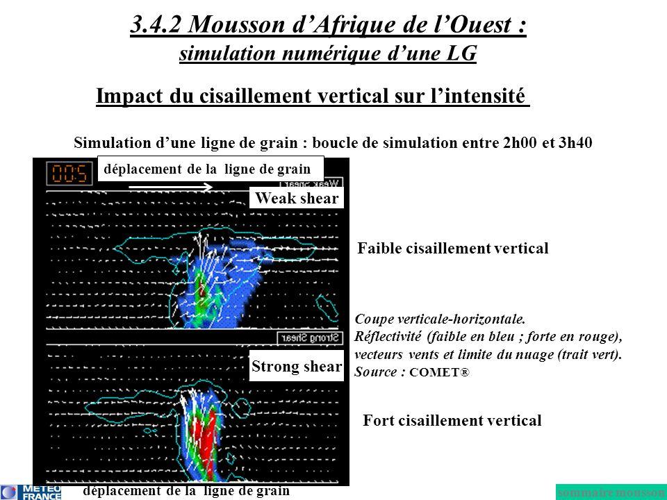 Impact du cisaillement vertical sur lintensité Faible cisaillement vertical Coupe verticale-horizontale. Réflectivité (faible en bleu ; forte en rouge