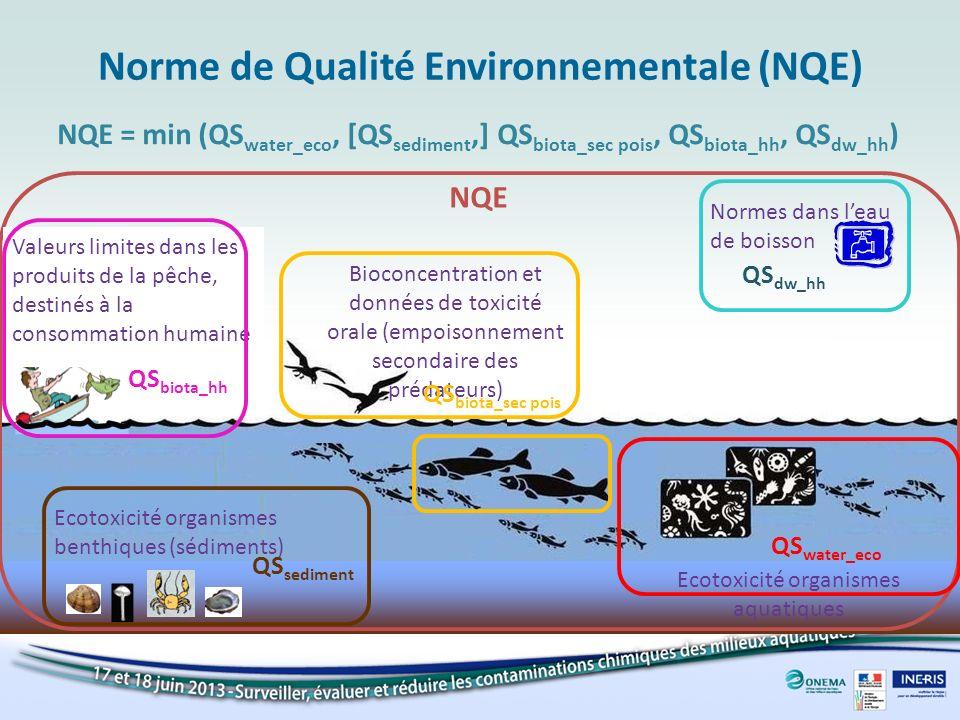 Cinq objectifs de protections Eau Sédiment Biote Santé Humaine Protection de lHomme vis-à-vis de lempoisonnement via la consommation des produits de la pêche Réglementation(s) existante(s) (eau potable…) Protection des organismes pélagiques Protection des organismes benthiques Protection des prédateurs supérieurs vis-à-vis de lempoisonnement secondaire QS water_eco QS sediment QS biota_sec pois QS biota_hh QS dw_hh La QS la plus contraignante est désignée comme NQE