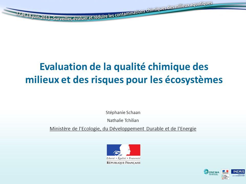 Evaluation de la qualité chimique des milieux et des risques pour les écosystèmes Stéphanie Schaan Nathalie Tchilian Ministère de l'Ecologie, du Dével