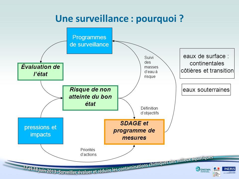 Suivi des masses deau à risque Une surveillance : pourquoi ? SDAGE et programme de mesures eaux de surface : continentales côtières et transition eaux