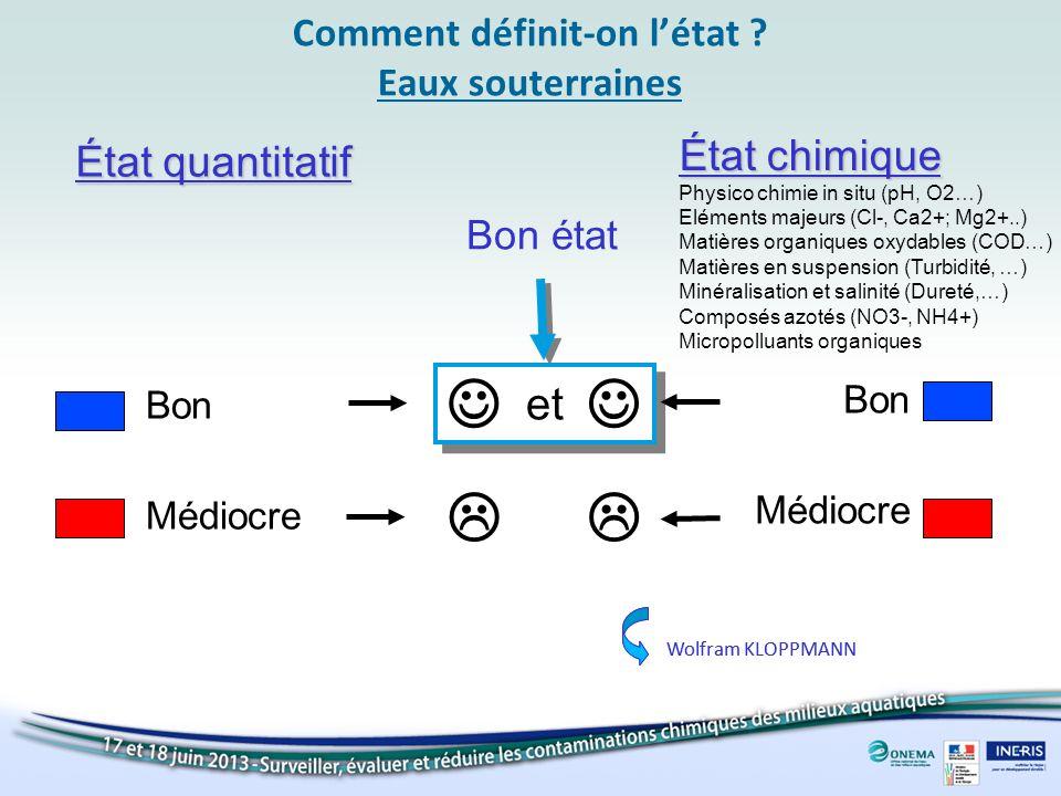 Comment définit-on létat ? Eaux souterraines et État chimique Physico chimie in situ (pH, O2…) Eléments majeurs (Cl-, Ca2+; Mg2+..) Matières organique