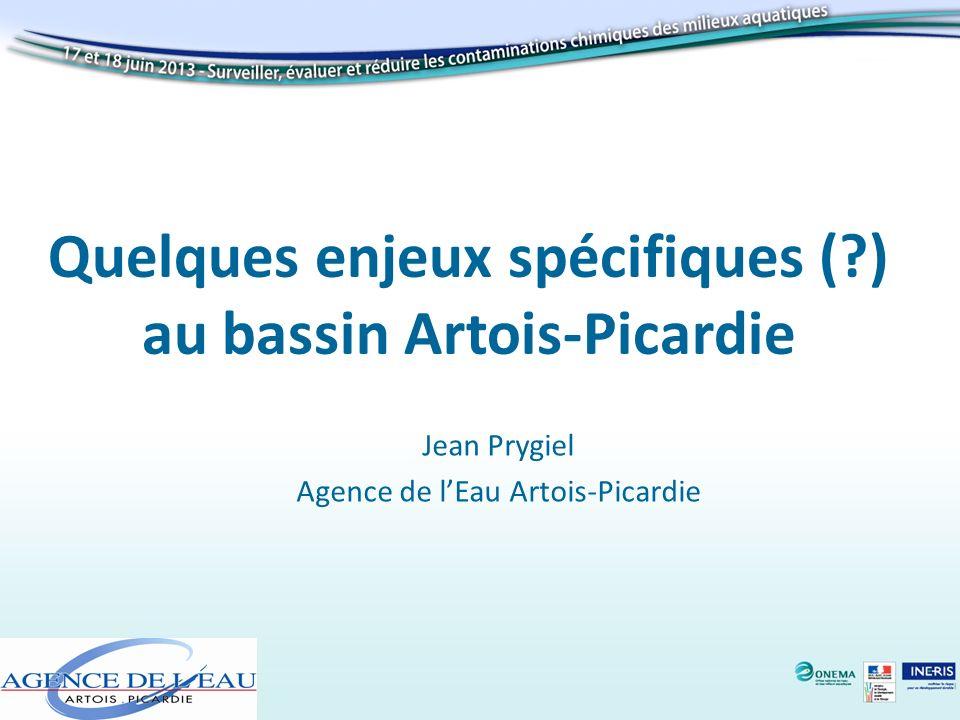 Quelques enjeux spécifiques (?) au bassin Artois-Picardie Jean Prygiel Agence de lEau Artois-Picardie