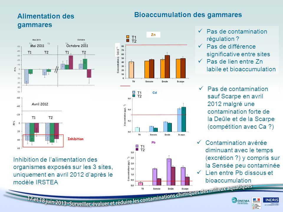 Inhibition de lalimentation des organismes exposés sur les 3 sites, uniquement en avril 2012 daprès le modèle IRSTEA Alimentation des gammares Bioaccu