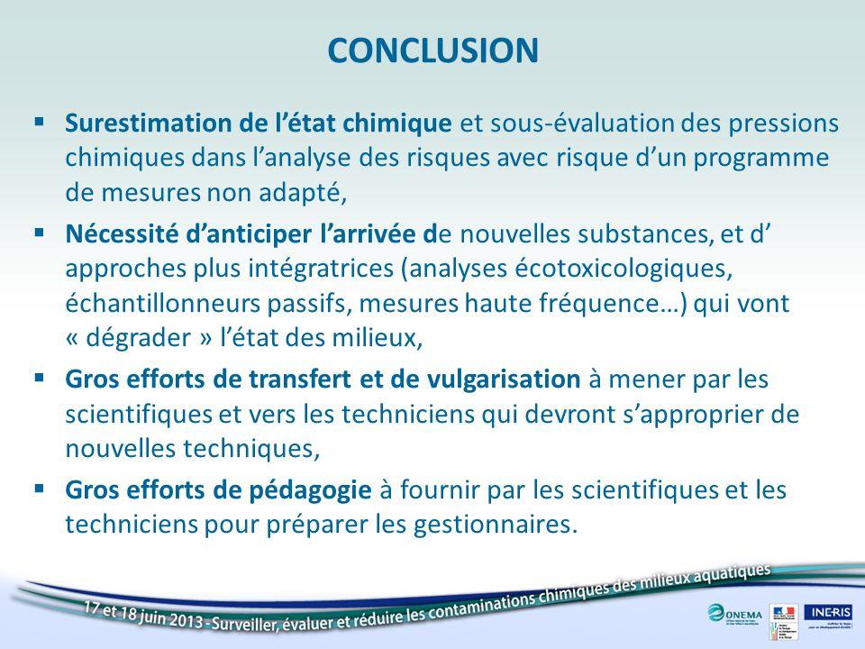 CONCLUSION Surestimation de létat chimique et sous-évaluation des pressions chimiques dans lanalyse des risques avec risque dun programme de mesures n