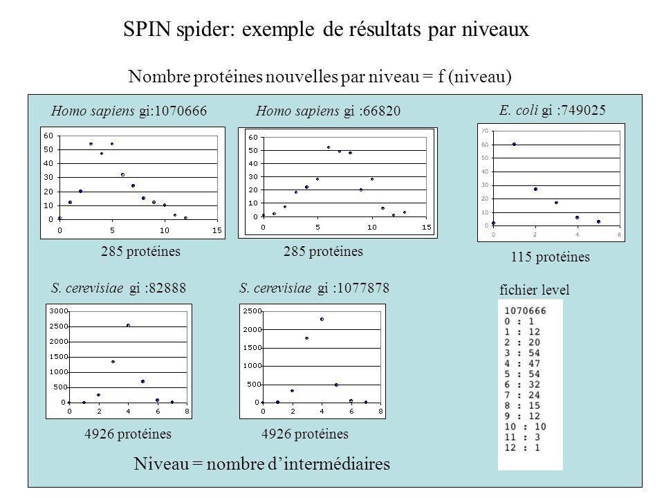 SPIN spider: exemple de résultats par niveaux Homo sapiens gi:1070666Homo sapiens gi :66820 S. cerevisiae gi :82888S. cerevisiae gi :1077878 fichier l