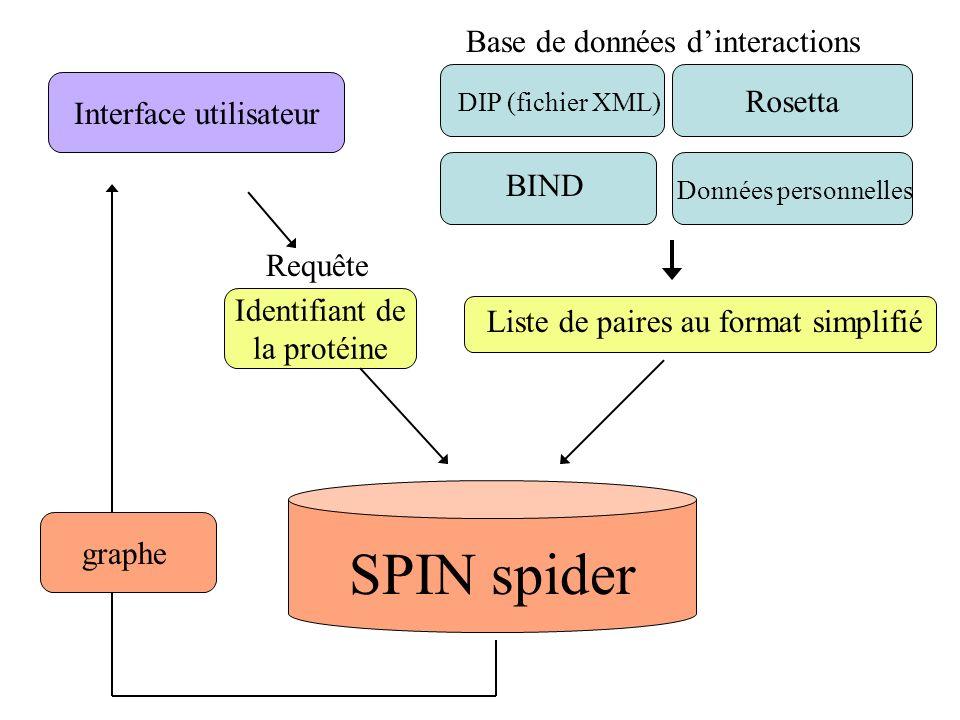Rosetta Base de données dinteractions DIP (fichier XML) BIND Données personnelles Liste de paires au format simplifié SPIN spider Interface utilisateu