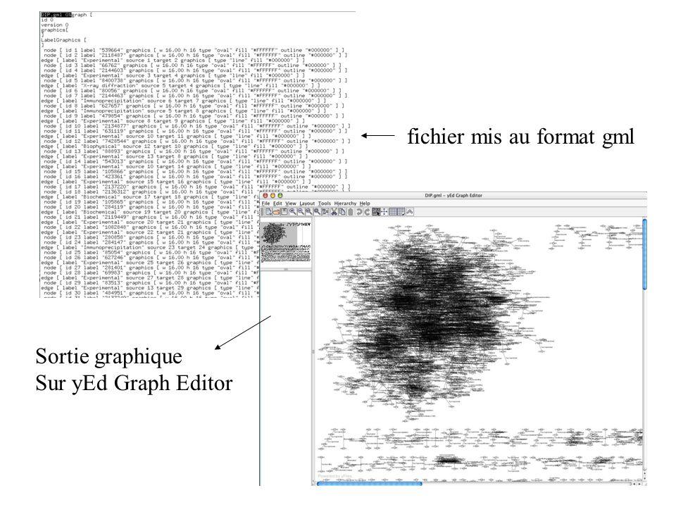 fichier mis au format gml Sortie graphique Sur yEd Graph Editor