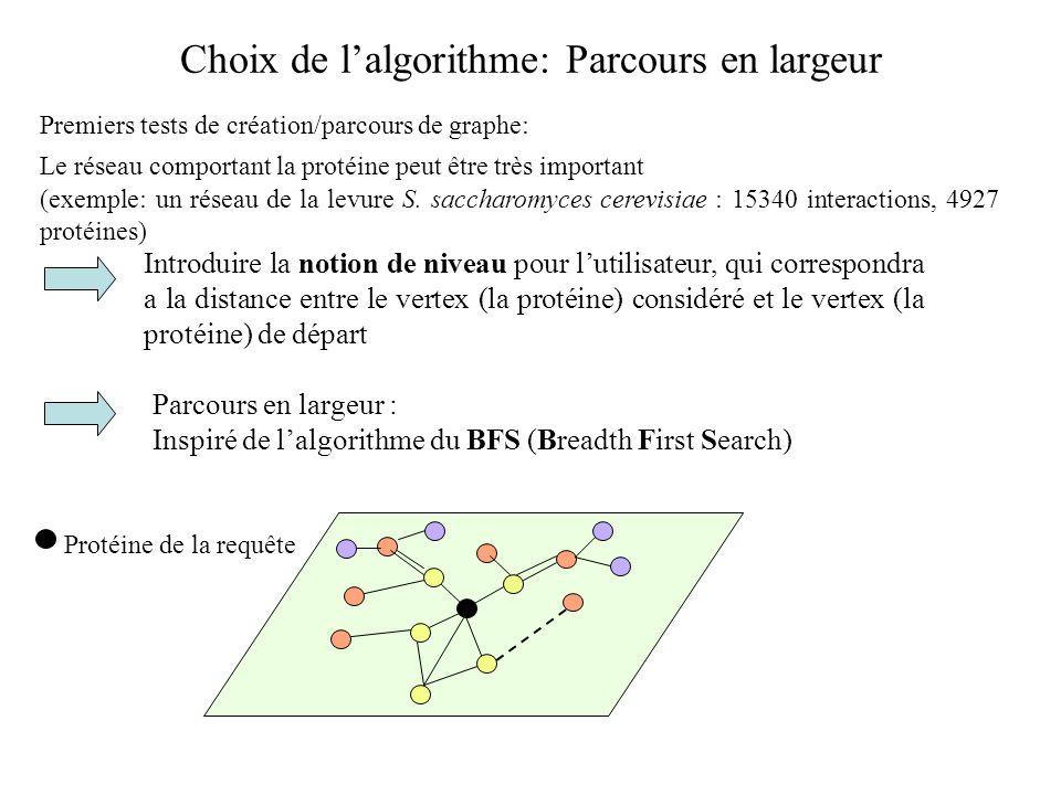 Choix de lalgorithme: Parcours en largeur Premiers tests de création/parcours de graphe: Le réseau comportant la protéine peut être très important (ex