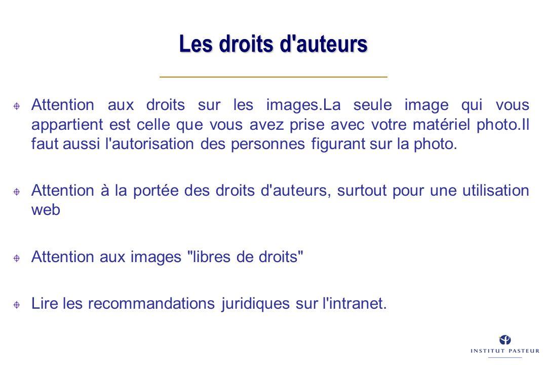 Les droits d auteurs Attention aux droits sur les images.La seule image qui vous appartient est celle que vous avez prise avec votre matériel photo.Il faut aussi l autorisation des personnes figurant sur la photo.