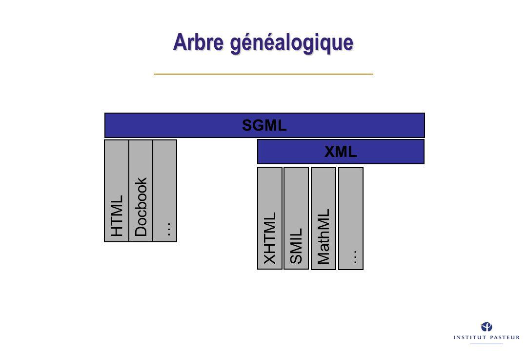 Introduction au marquage - 1 Pour d é crire un fichier hypertexte, le langage HTML ins è re des balises dans le texte du document : D é but de mise en formeFin de mise en forme ici votre texte Synonymes: marqueur, élément, tag.