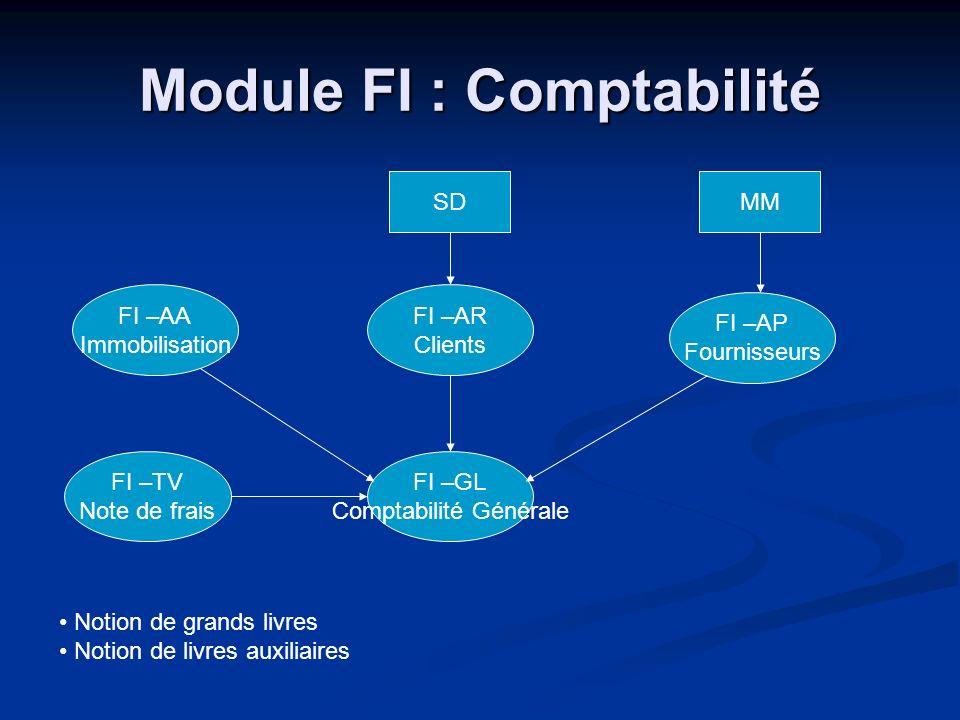 Module FI : Comptabilité FI –GL Comptabilité Générale FI –AP Fournisseurs FI –AR Clients FI –AA Immobilisation FI –TV Note de frais SDMM Notion de gra