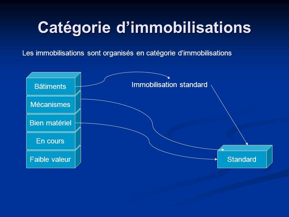 Faible valeur En cours Bien matériel Mécanismes Catégorie dimmobilisations Les immobilisations sont organisés en catégorie dimmobilisations Bâtiments
